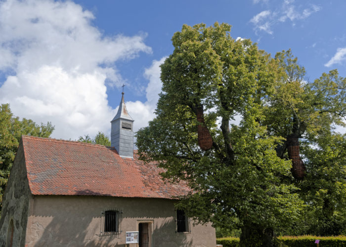 association-saint-jean-baptiste (5)
